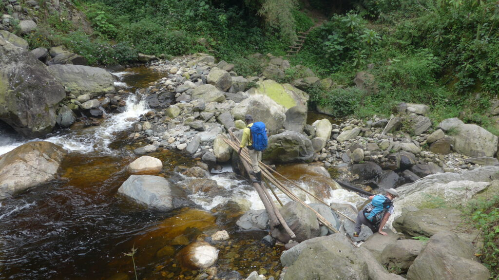 Improvisierte Brücken sind Teil des Rwenzori Mountain Trekings