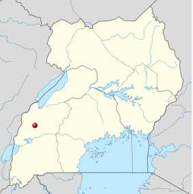 Der KIbale Forest Nationalpark liegt im Süd-Westen Ugandas