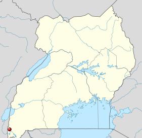 Der Bwindi National Park liegt im Südwesten Uganda's ist die Heimat der Berggorillas