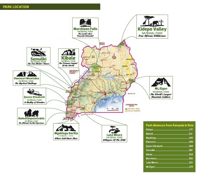 Uganda ist mit 10 National Parks und 18 Schutzgebieten gesegnet.