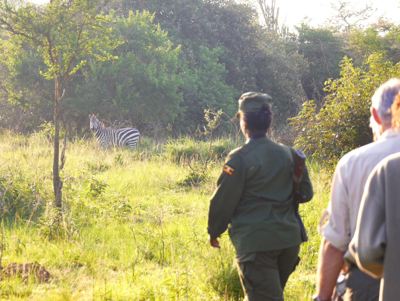 Unsere UGANDA TREKKING SAFARI führt in den Lake Mburo National Park